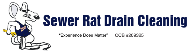 Sewer Rat Drain Cleaning